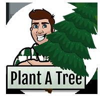 Plant A Tree Niagara